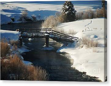 Peaceful Winter Day Canvas Print by Lucy Bounds