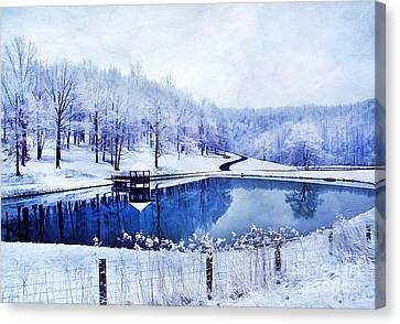 Peaceful Winters Day Canvas Print by Darren Fisher
