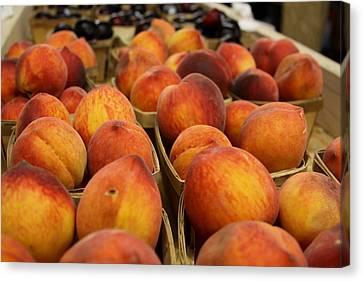 Peaches Ala Mollys Market Canvas Print by Theresa Johnson
