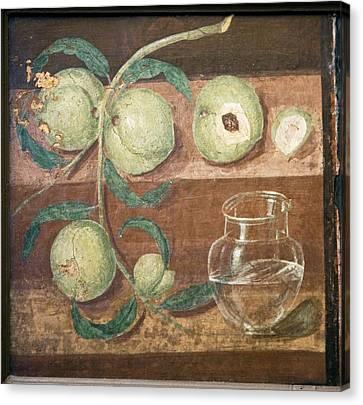 Peaches And A Glass Jug, Roman Fresco Canvas Print by Sheila Terry
