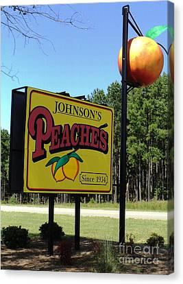 Peaches Canvas Print by Jennifer Kelly