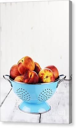 Peaches Canvas Print by Stephanie Frey