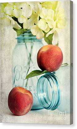 Peachy Canvas Print by Darren Fisher