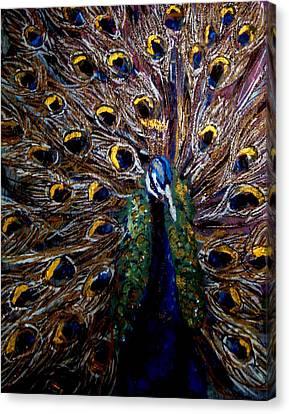 Peacock 1 Canvas Print by Amanda Dinan