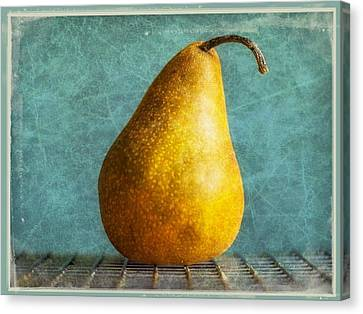 Pear Canvas Print by Cathie Tyler