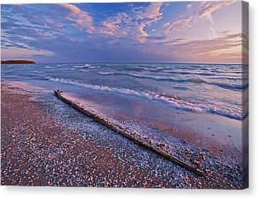 Pebbles And Shells On Shoreline Of Lake Canvas Print