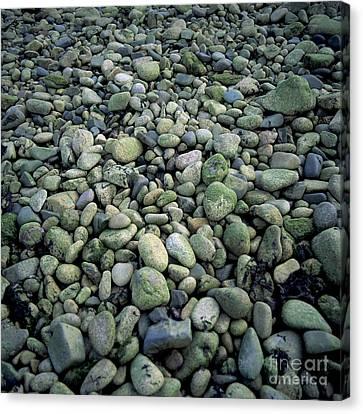 Pebbles Canvas Print by Bernard Jaubert