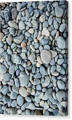 Oceania Canvas Print - Pebbles by John Buxton