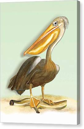 Canvas Print featuring the painting Pelican Bill by Anne Beverley-Stamps
