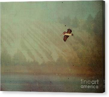 Pelican Canvas Print by Billie-Jo Miller