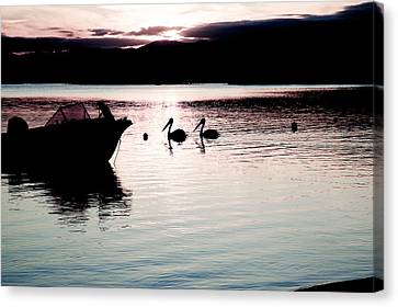 Canvas Print featuring the photograph Pelican Boat. by Carole Hinding