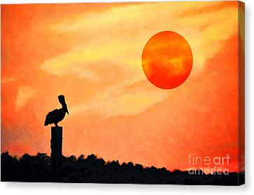 Canvas Print featuring the photograph Pelican During Hot Day by Dan Friend