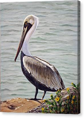 Canvas Print featuring the painting Pelican On The Waterway by Jimmie Bartlett