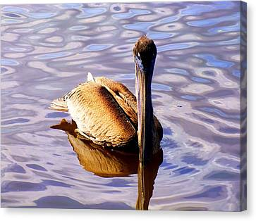 Pelican Puddles Canvas Print by Karen Wiles