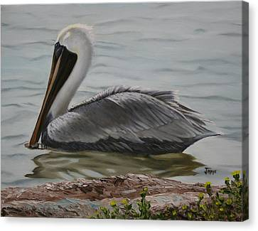 Canvas Print featuring the painting Pelican Swim by Jimmie Bartlett