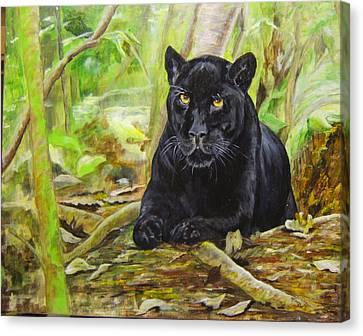 Pensive Panther Canvas Print