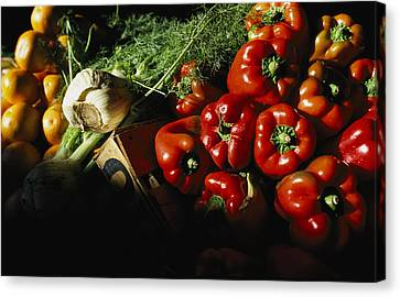 Peppers, Oranges And Fennel Fill Bins Canvas Print