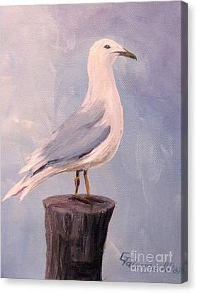 Canvas Print featuring the painting Perched Seagull by Gretchen Allen