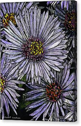 Perennial Asters Canvas Print by Robert Goudreau