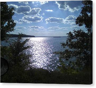 Perfect Pickwick Beauty Canvas Print by Dorothy S Guinn