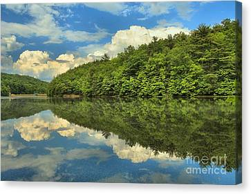 Perfect Reflections Canvas Print by Adam Jewell