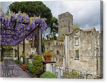 Wisteria In Bloom Canvas Print - Pergola And Blooming Wisteria by George Oze