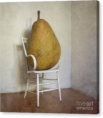 Perry Was Just Thankful Not To Have Her Mothers Piano Legs Canvas Print by Paul Grand