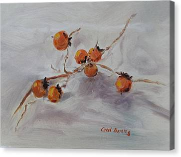 Persimmons Canvas Print by Carol Berning