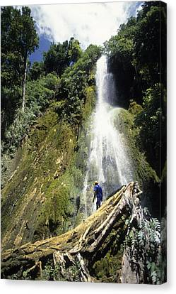 Person At Base Of Mele Cascades Waterfall, Near Mele Maat, Efate Island, Shefa, Vanuatu, Pacific Canvas Print by Holger Leue