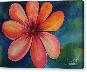 Petals Canvas Print by Carolyn Weir