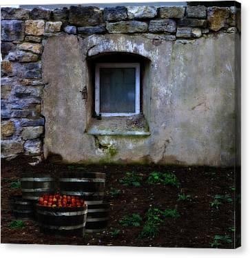 Fuselier Canvas Print - Petite Harvest by Cecil Fuselier