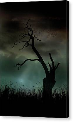 Canvas Print featuring the photograph Petrified by Richard Piper