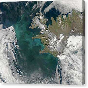 Phytoplankton Bloom In The North Canvas Print by Stocktrek Images