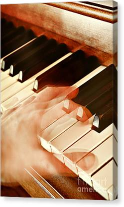 Piano Canvas Print by HD Connelly