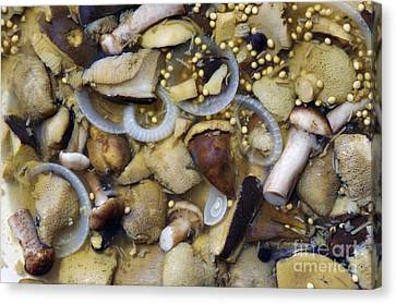 Pickled Mushrooms Canvas Print by Michal Boubin