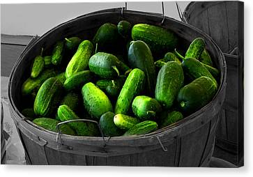 Farm Stand Canvas Print - Pickling Cucumbers by Ms Judi