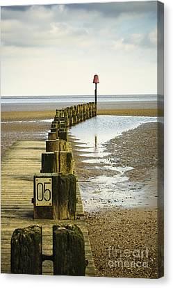 Pier Pilings By The Ocean Canvas Print by Jon Boyes