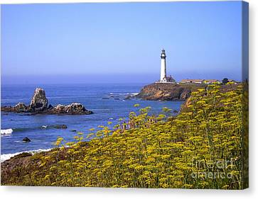 Pigeon Point Lighthouse California Coast Canvas Print by Mike Nellums