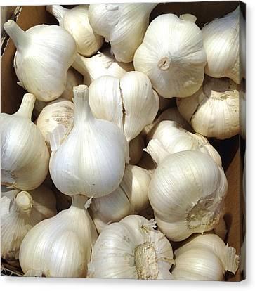 Pile Of Garlic Canvas Print