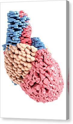 Pills Heart Canvas Print by MedicalRF.com