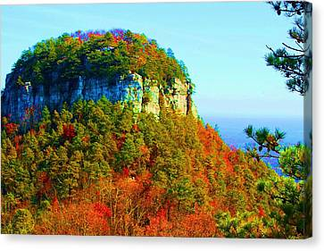 Pilot Mountain Canvas Print