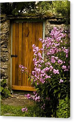 Pine Door Canvas Print by Peter Jenkins