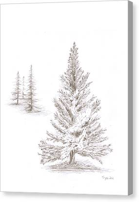 Pine Grove Canvas Print by Steven Powers SMP
