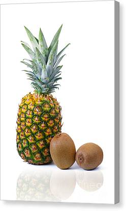 Pineapple Canvas Print - Pineapple And Kiwis by Carlos Caetano