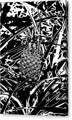 Pineapple  Canvas Print by Elizabeth  Doran