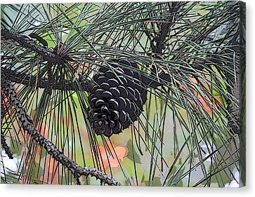 Canvas Print featuring the photograph Pinecone by Donna  Smith