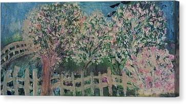 Pink And White Trees And Fence Canvas Print by Anne-Elizabeth Whiteway