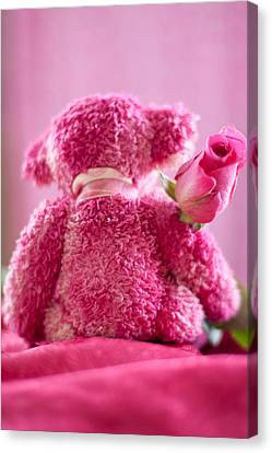 Canvas Print featuring the photograph Pink Bear Behind Holding Pink Rose by Ethiriel  Photography