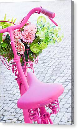 Pink Bicycle Canvas Print by Carlos Caetano