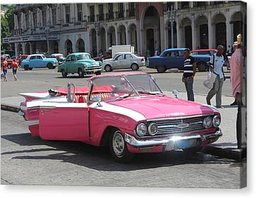Pink Chevy In Havana Canvas Print by David Grant